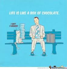 Life Is Like A Box Of Chocolates Meme - life is like a box of chocolate by labkitty meme center