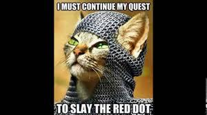 Funniest Cat Memes - funny cat memes youtube