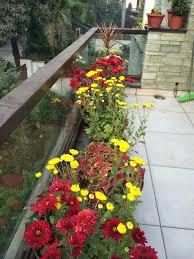 blumenkã sten balkon baigy terrasse dekor hauteur