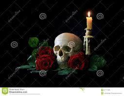 halloween black roses vanitas human skull with red roses over black bagkground stock