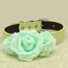 mint green flowers mint green flowers dog collar pet wedding dogs birthday gift