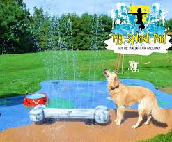 Backyard For Dogs by 35 Best Backyard Dog Park Images On Pinterest Dog Playground