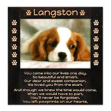 remembrance picture frame pawprints dog remembrance frame we engrave the touching poem