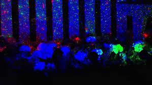 Outdoor Laser Lights Outdoor Lighting Laser Lights Reviews Best Outdoor