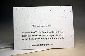 seed cards handmade cards pressed flower petals and seeds in the paper