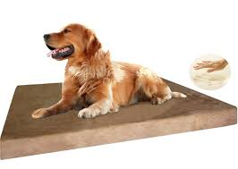 Dog Sofas For Large Dogs by 5 Best Dog Beds For Senior Arthritic Dogs