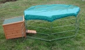 best outdoor rabbit hutch u0026 guinea pig hutch 2018