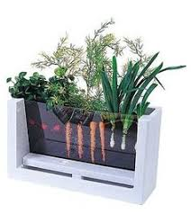 indoor kitchen garden ideas indoor salad garden kit gardening ideas