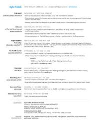 Cio Resume Samples by Stock Resume Resume Cv Cover Letter