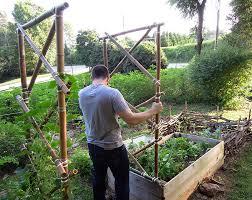 Make Your Own Cucumber Trellis Diy Garden Trellis This Natural Dream