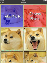 Create Your Own Doge Meme - doge create your own shibe doge memes on the app store