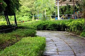 semmozhi poonga botanical garden chennai travelmeout the