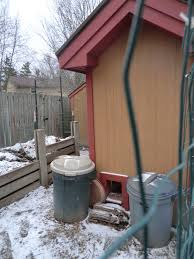 Backyard Chicken Blogs by Gallus Haus Backyard Chickens