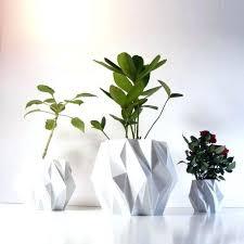 decorative indoor plants small indoor plant pots plants plant pots small decorative indoor