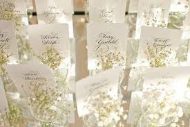 for how does baby s breath last everafterguide