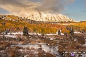 colorado fall colors photos pictures rocky mountains autumn