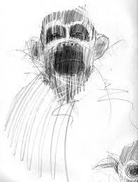 monkey sketch sketches anthony granato