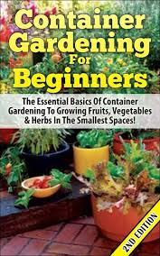 cheap container gardening pots find container gardening pots