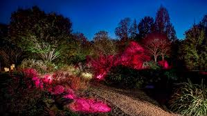 jc raulston arboretum moonlight in the garden