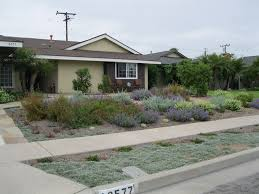 front yard xeriscaping xeriscape landscaping creations landscape