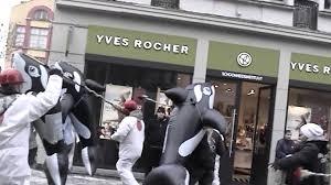 belgian shepherd vancouver sea shepherd belgium performs flash mob youtube