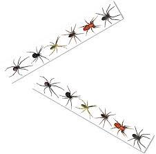 retailmenot halloween horror nights realistic fake creepy scary spiders tarantulas spider webs