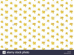 flower yellow colza tiny small spring summer wildflowers
