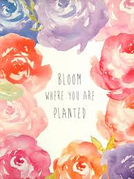 47 best quotes images on pinterest wallpapers watercolors and