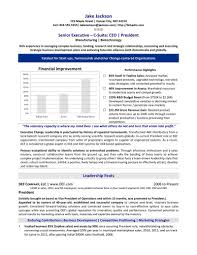 executive resume templates word executive resumes ceo search resumes