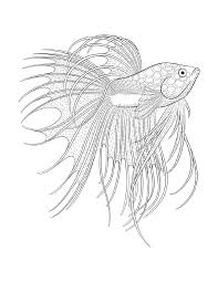 373 best coloring pages to print underwater images on pinterest