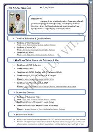 Land Surveyor Resume Sample by Land Surveyor Resume Format Ecordura Com