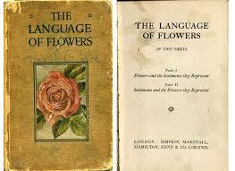 The Language Of Flowers The Secret Language Of Flowers Garden Valentines Anna Walker