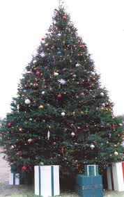 decorating jfp christmas trees