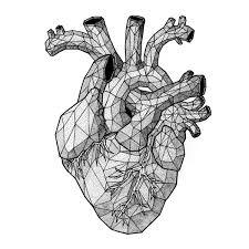 the heart mgns u2026 pinteres u2026