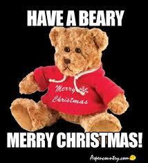 Snuggle Bear Meme - best bear meme have a beary merry christmas wallpaper site