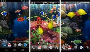 free wallpaper for android phone best aquarium and fish live wallpapers for android android authority