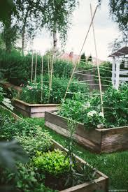 261 best general gardening ideas images on pinterest garden