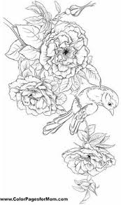 mockingbird magnolia mississippi bird flower