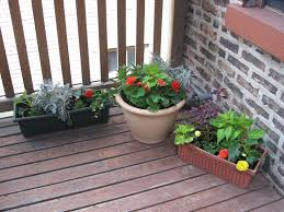 window box container u0026 shady deck container gardens in chicago 4