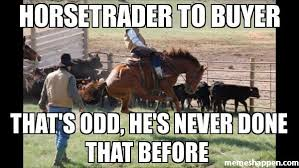 Odd Memes - horsetrader to buyer that s odd he s never done that before meme