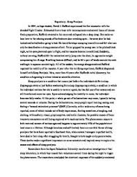 Expository essay examples for