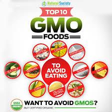 top 10 worst gmo foods for your gmo foods list natural society