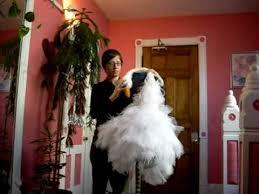 swan dress bjork swan dress