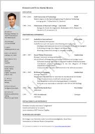 format for professional resume it professional resume format for experienced free