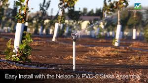irrigating hazelnut trees with the nelson r10 rotator sprinkler