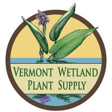 vermont native plants vermont wetland plant supply home facebook