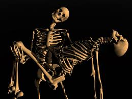 Dancing Halloween Skeleton by Halloween Skeleton Wallpaper Halloween Skeleton Photos Pack V