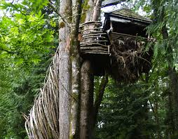 the nest a wood tree house suspended 23 ft the ground by