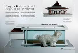 luxurious design for dogs design braun publishing
