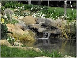 backyards terrific backyard ponds with waterfall garden ponds